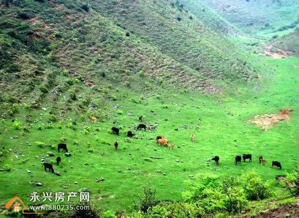 湖南永兴十大旅游景点 永兴好玩的风景区